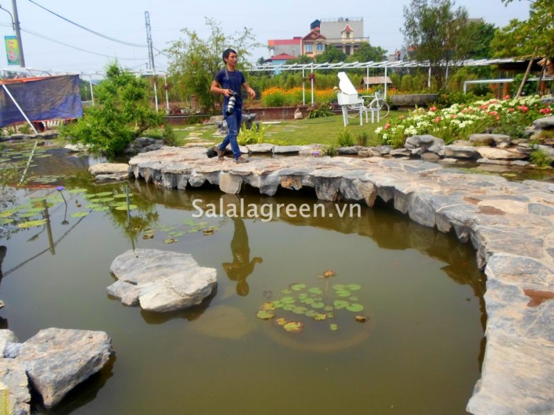 Tư vấn và thi công vườn hoa Nhật Tân