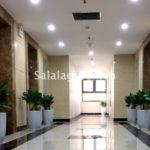 Cho thuê cây nội thất dự án An Bình City