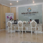Cho thuê cây nội thất thẩm mỹ viện Đông Á
