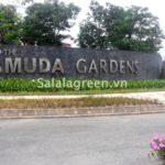 Thi công cây xanh dự án Gamuda Garden City