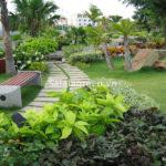 Dịch vụ chăm sóc cây xanh sân vườn tốt nhất