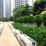 Chăm sóc sân vườn như thế nào để luôn xanh tốt và bắt mắt