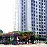 Chăm sóc cây xanh chung cư chuyên nghiệp – SalalaGreen