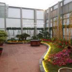 Thiết kế vườn trên mái HUD