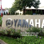 SalalaGreen là đơn vị chăm sóc cảnh quan sân vườn nhà máy Yamaha Sóc Sơn