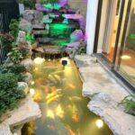 Sân vườn Sao Biển 0801 Ocean Park