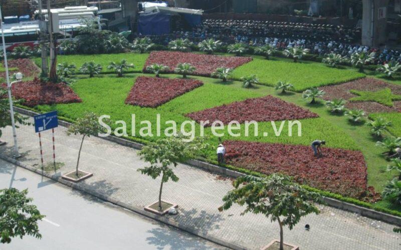 Duy trì cây xanh một số tuyến phố