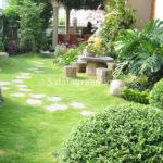 Cách tưới nước cho cây trong sân vườn sau trồng