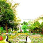 Thiết kế vườn hoa Trung tâm hội nghị quốc gia