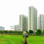 Công ty chăm sóc cây xanh chuyên nghiệp – SalalaGreen