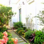 Dịch vụ chăm sóc cây xanh sân vườn biệt thự