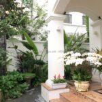Chăm sóc sân vườn Hướng Dương 326