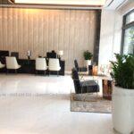 Cho thuê cây nội thất tại The Five Residences